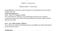 accounts manager cv template